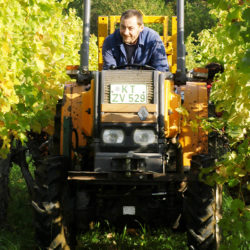 bild_winzer_traktor